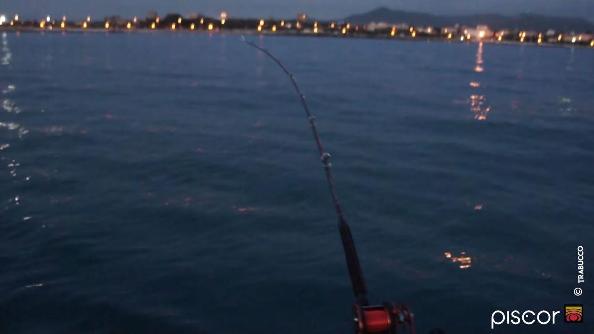 Pesca a Traina ai Calamari 9