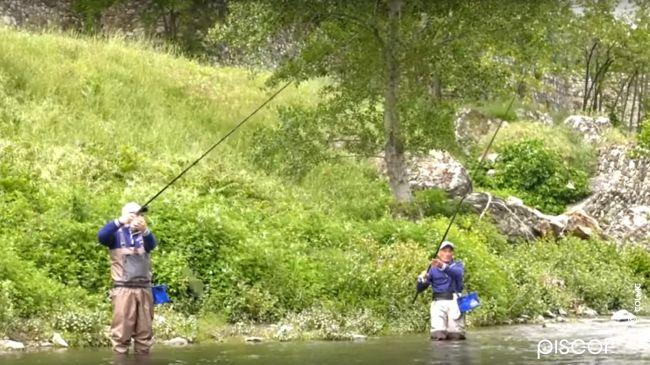 Pesca ai Cavedani con la Bolognese in Fiume 9