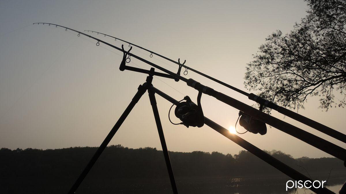 Pesca al Barbo 1