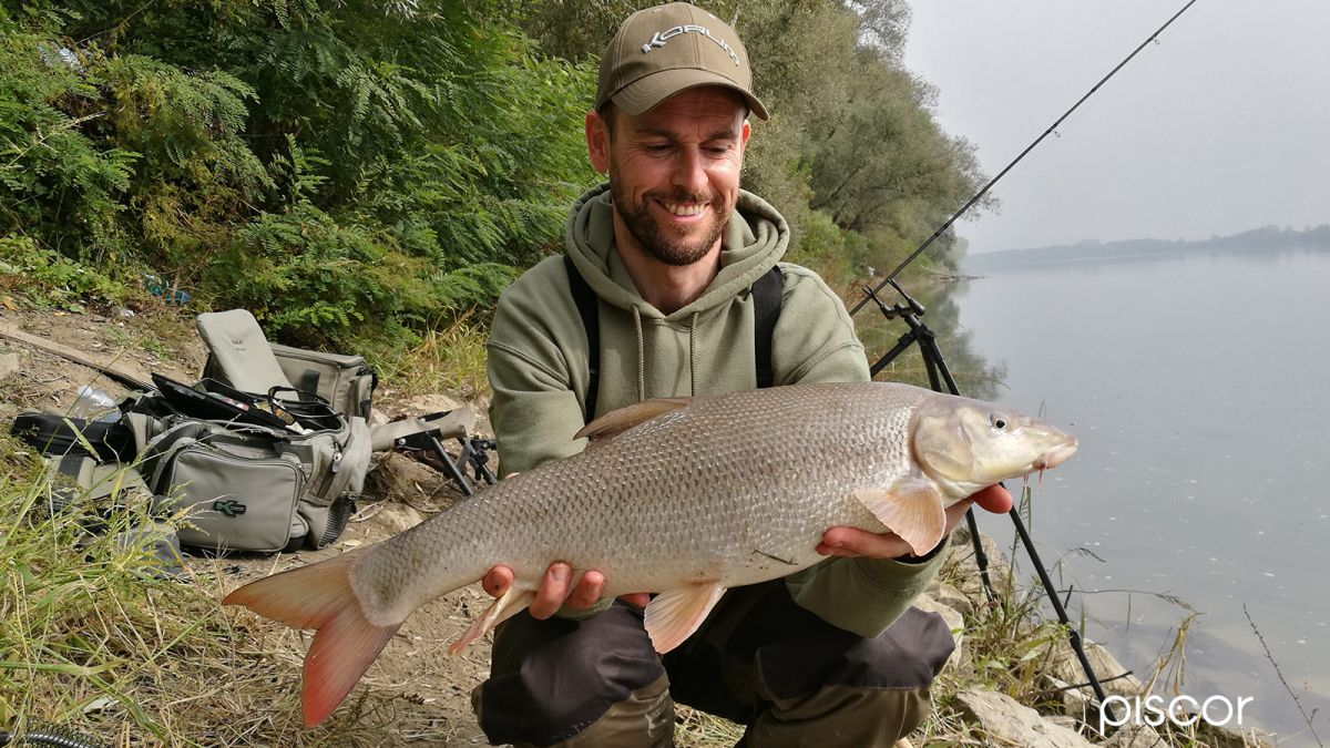 Pesca al Barbo 2