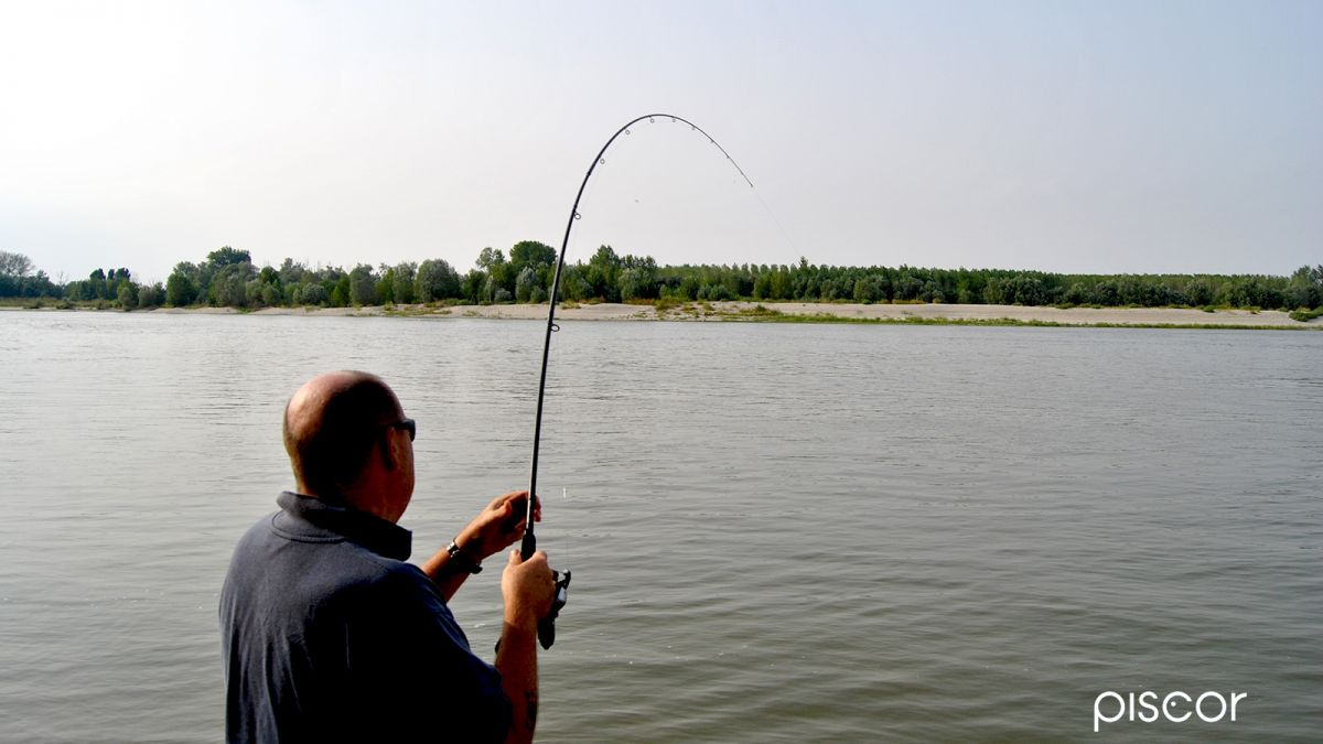 Pesca al Barbo 4