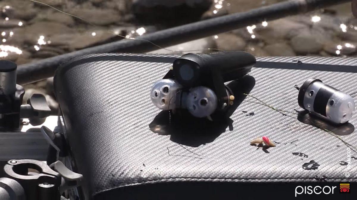 Pesca al Barbo a Feeder 5