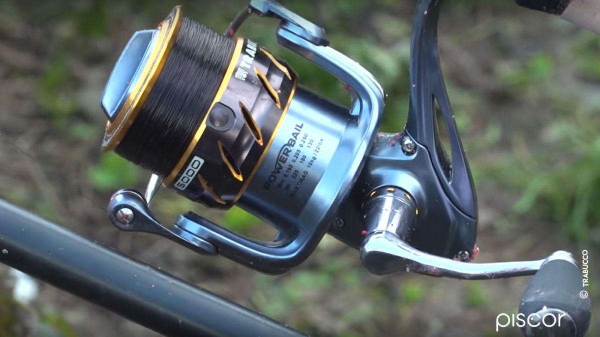 Pesca al Cavedano Feeder 4