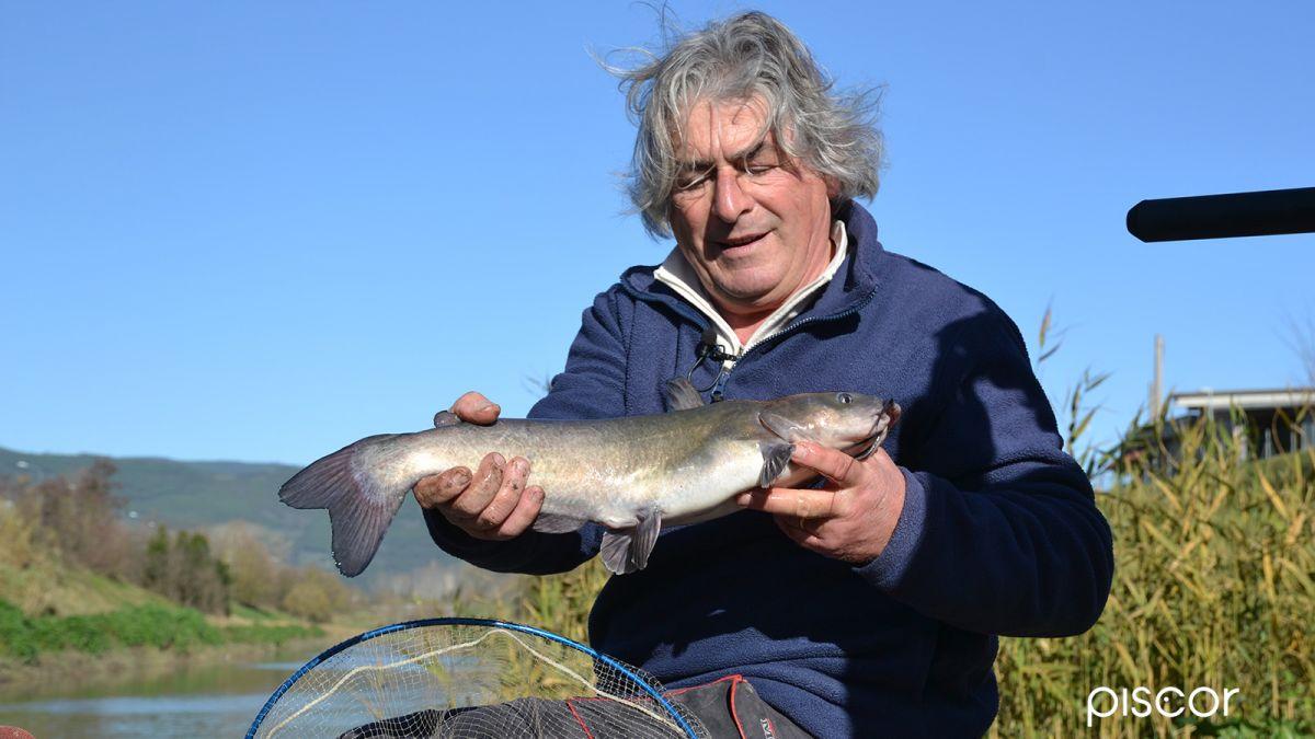 Pesca al Colpo 11