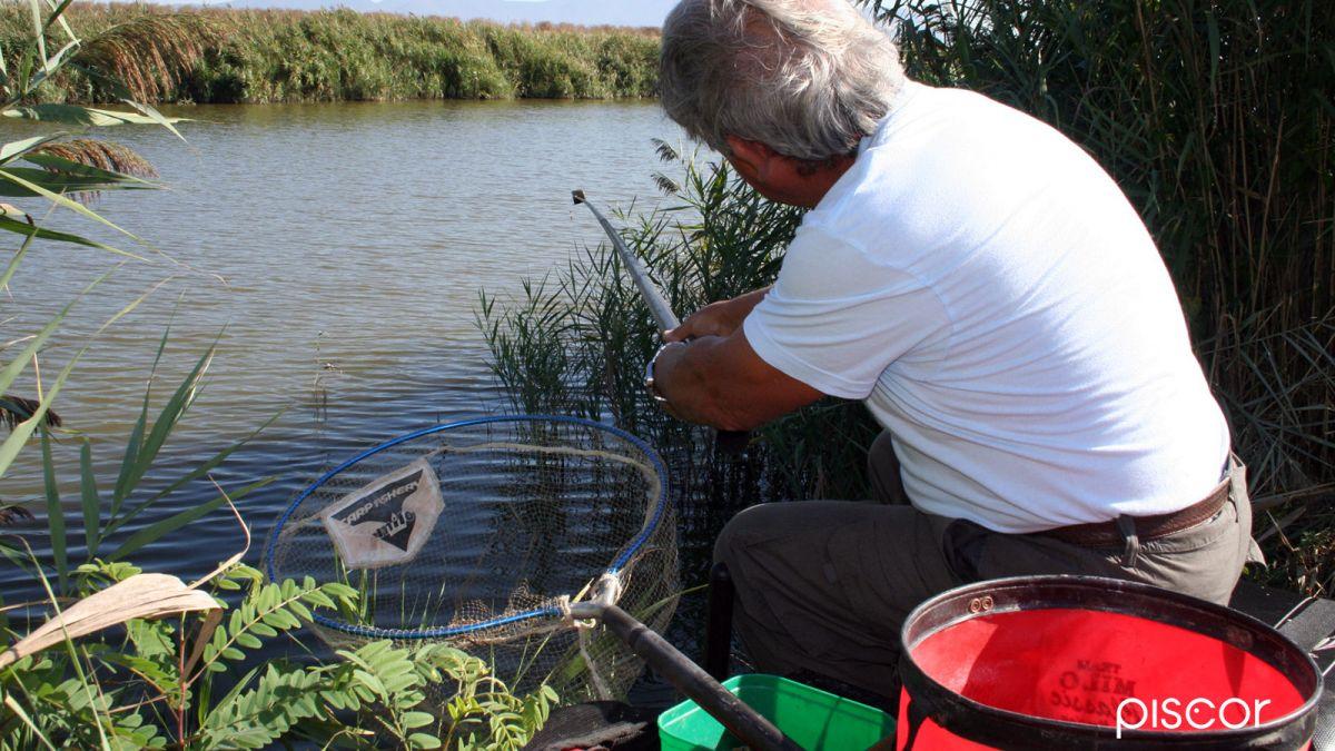 Pesca al Colpo 3