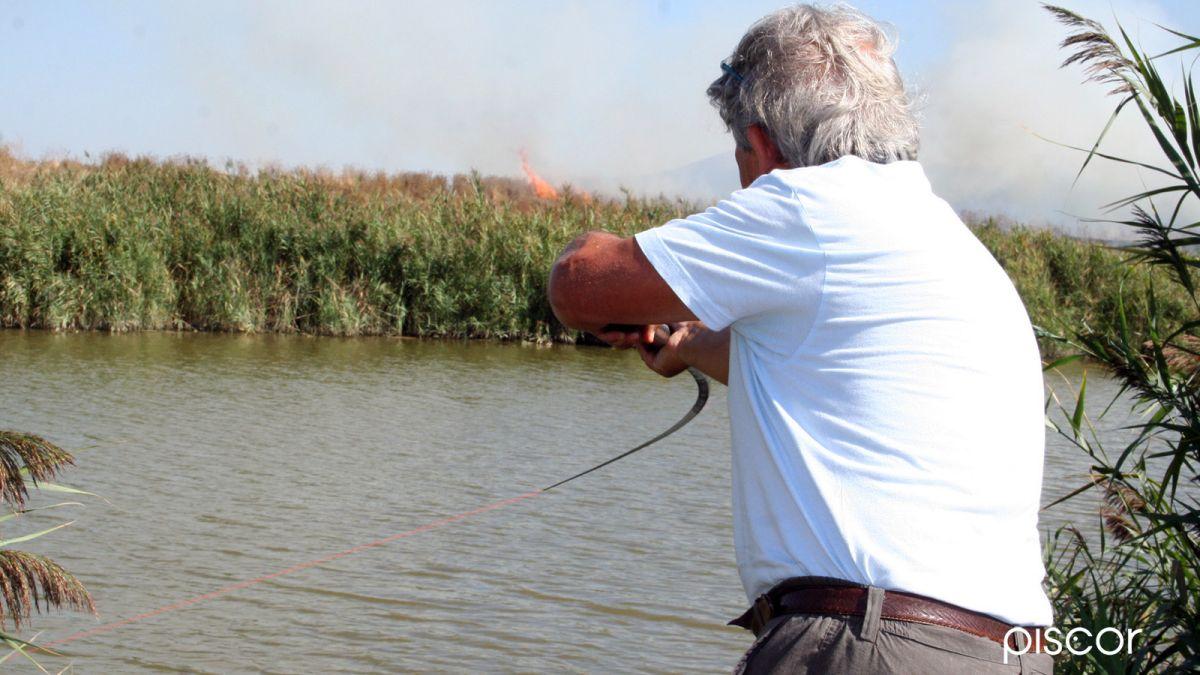 Pesca al Colpo 5