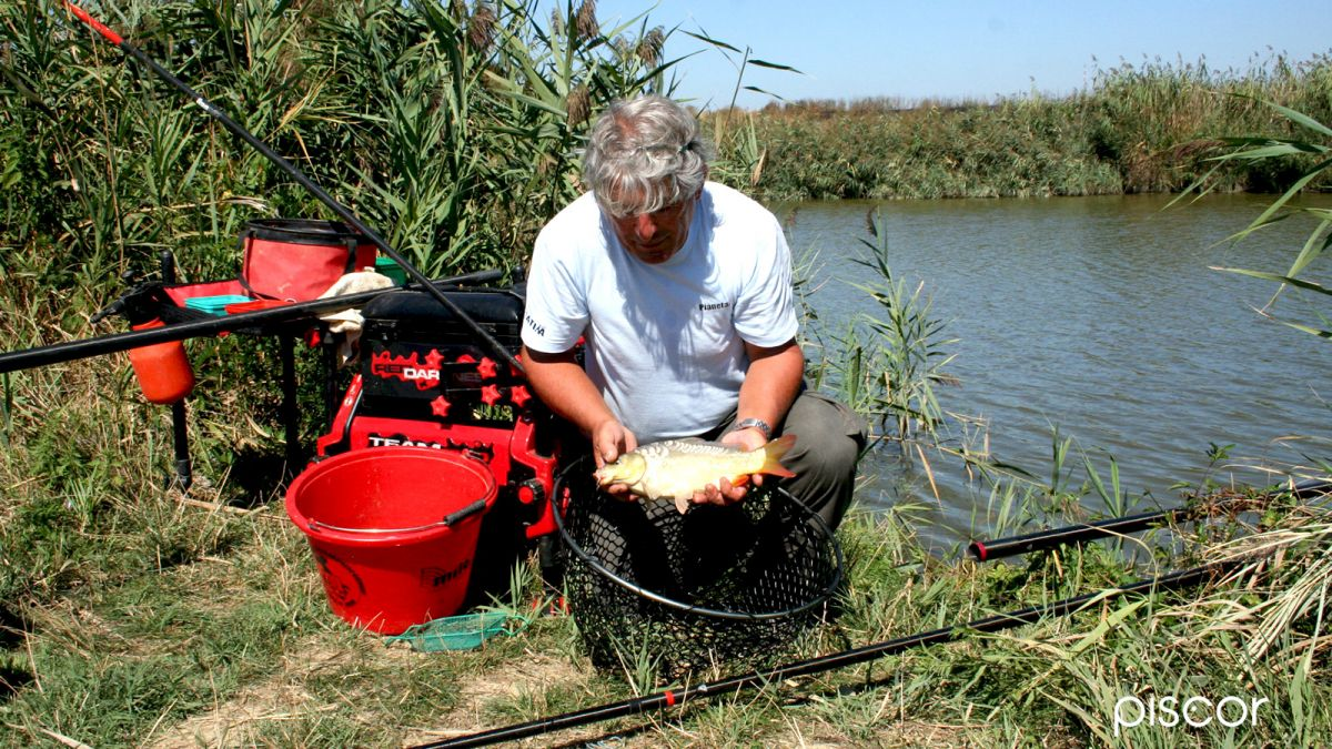 Pesca al Colpo 8