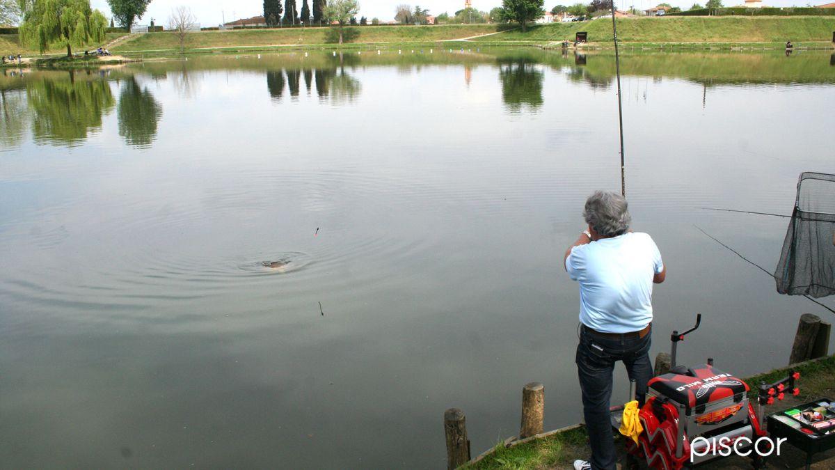 Pesca al Colpo in Laghetto 4