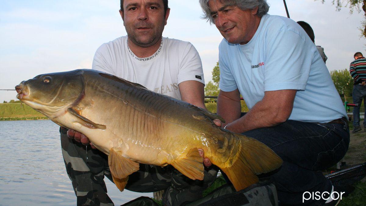 Pesca al Colpo in Laghetto 6