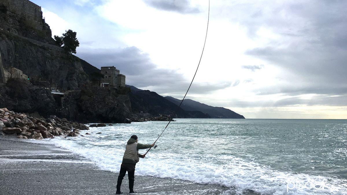 Pesca al Sarago con Bolognese 1