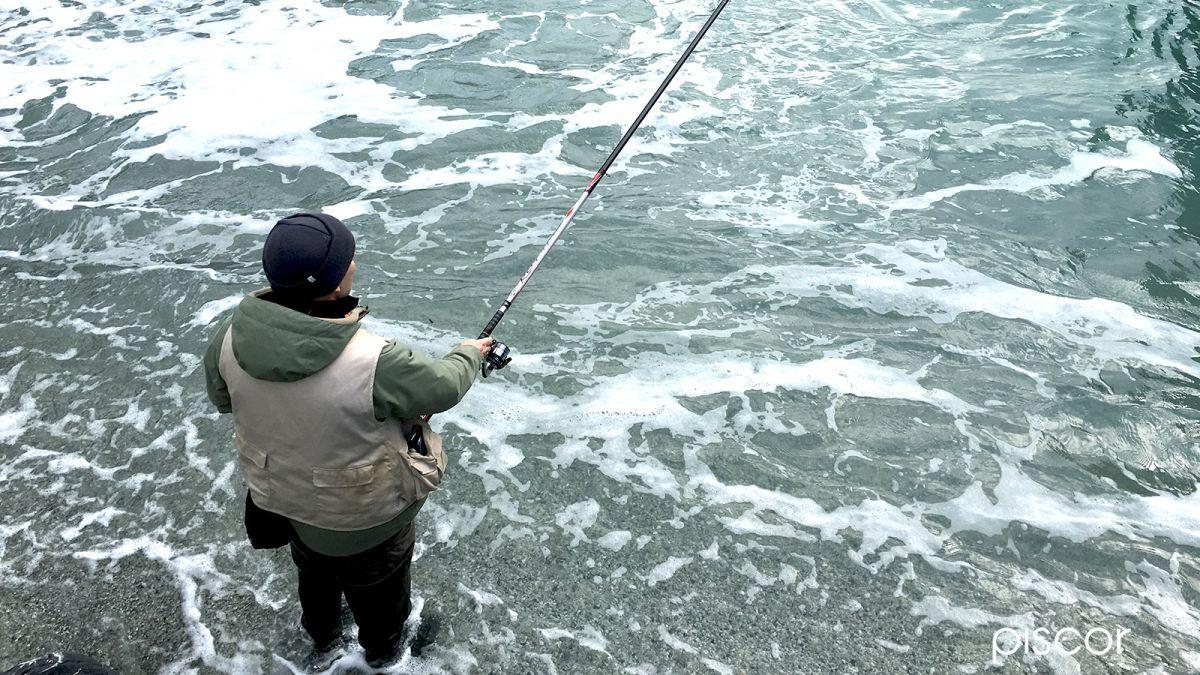 Pesca al Sarago con Bolognese 3