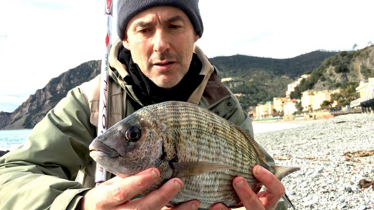 Pesca al Sarago con Bolognese 5