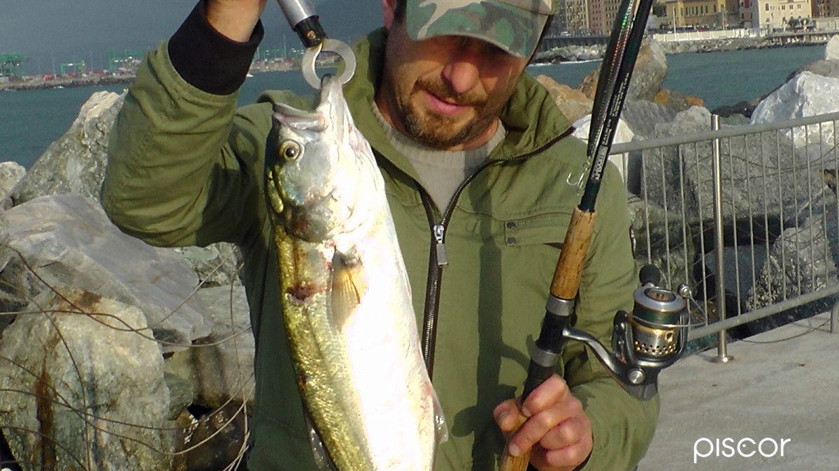 Pesca al Serra 6