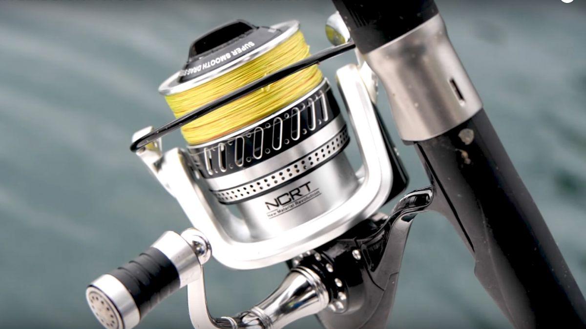 Pesca al Totano e Pesca al Calamaro 13