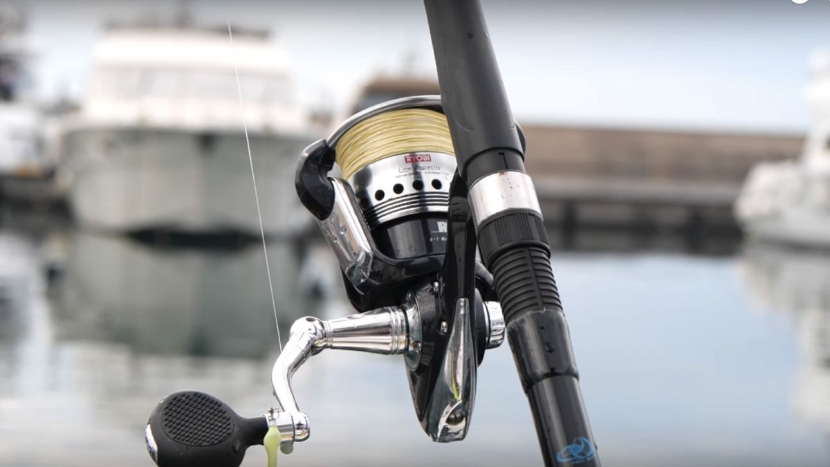 Pesca al Totano e Pesca al Calamaro 9
