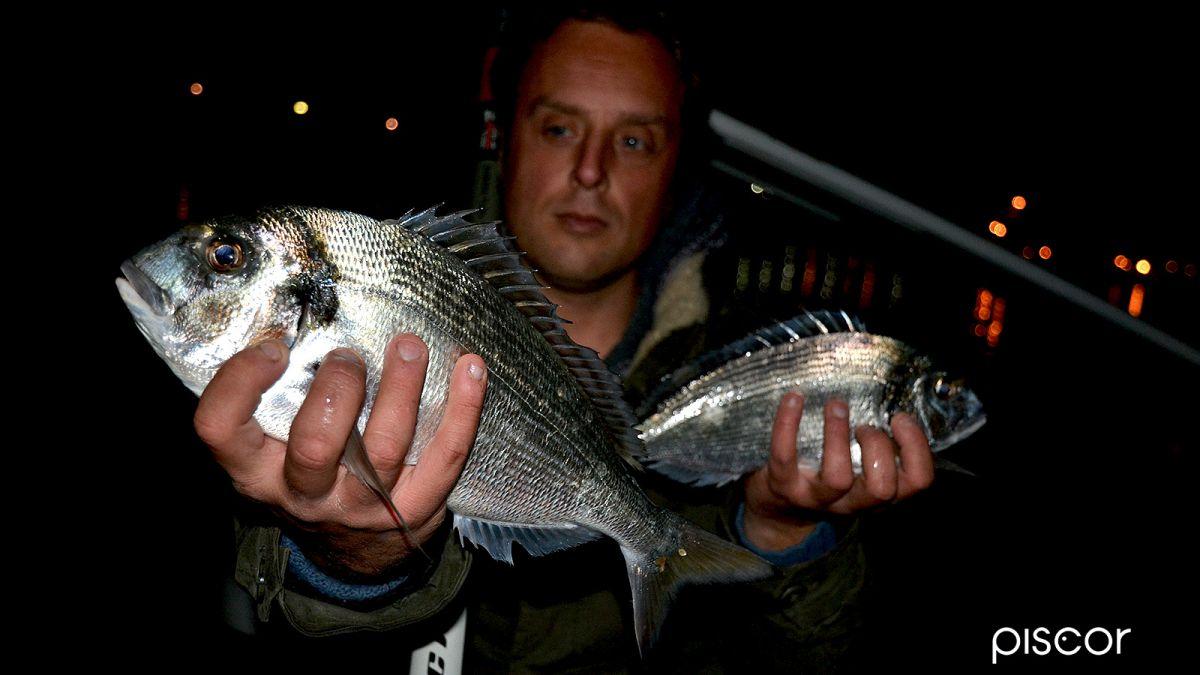 Pesca alla Bolognese 1
