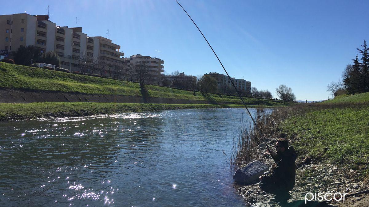 Pesca alla Passata 1