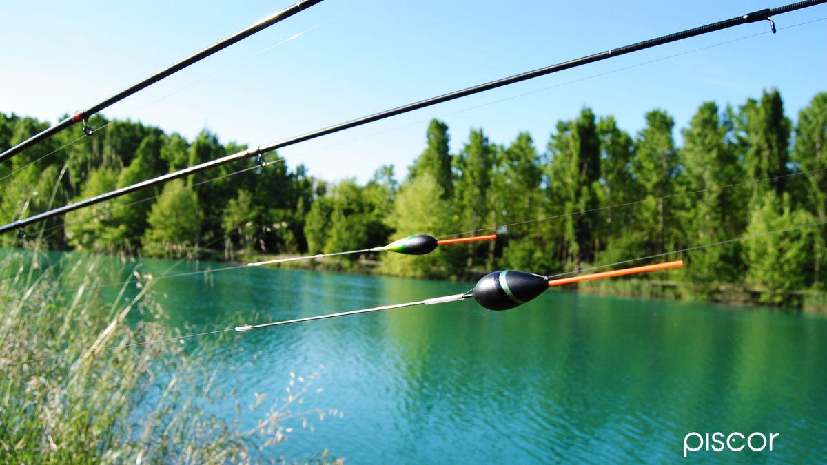 Pesca alla Scardola 2