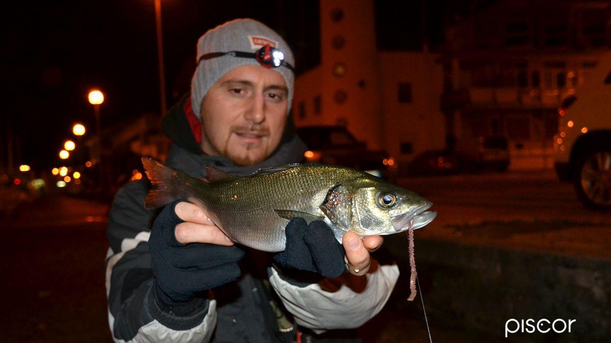 Pesca alla Spigola 1