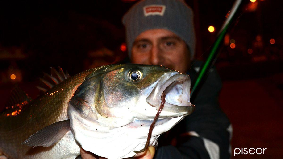 Pesca alla Spigola 3
