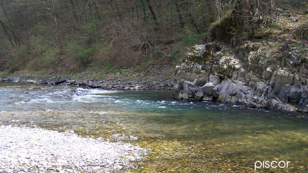 Pesca alla Trota a Rodolon in Torrente 1