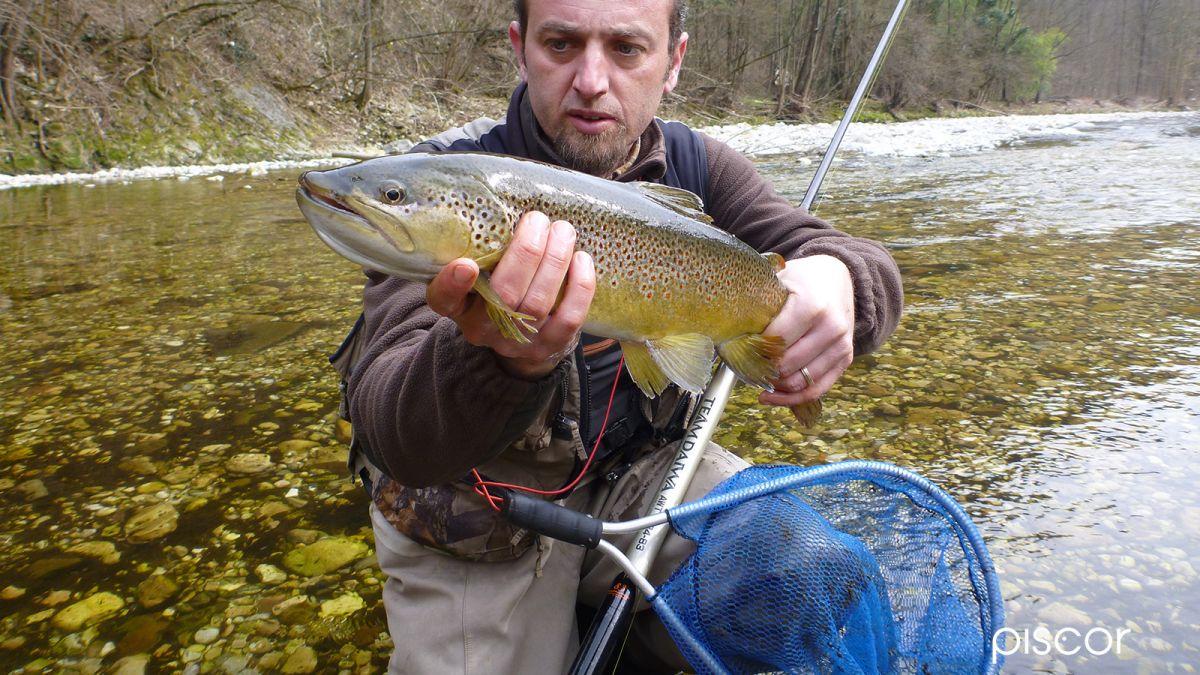 Pesca alla Trota a Rodolon in Torrente 2