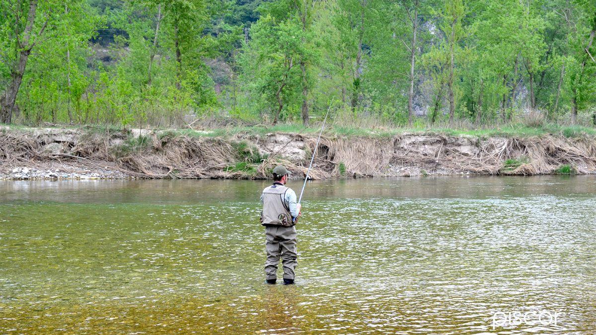 Pesca alla Trota a Rodolon in Torrente 8