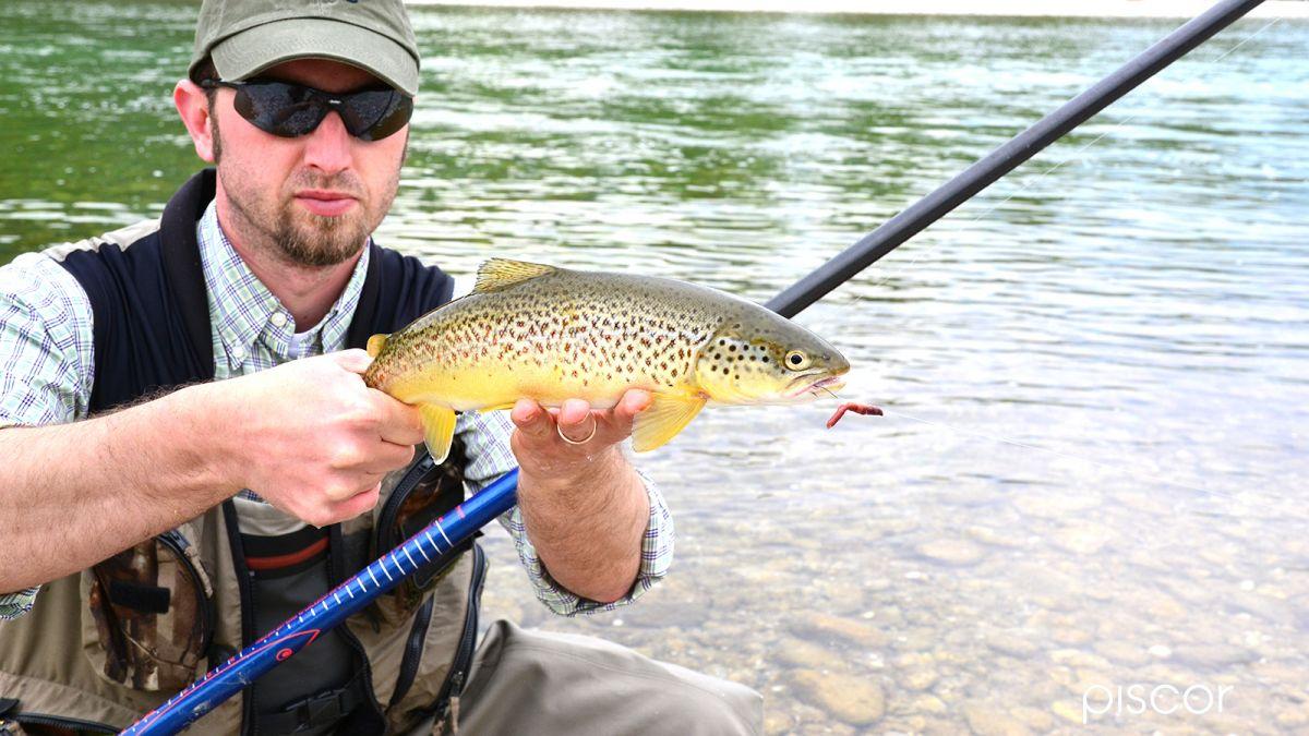 Pesca alla Trota con Galleggiante 1