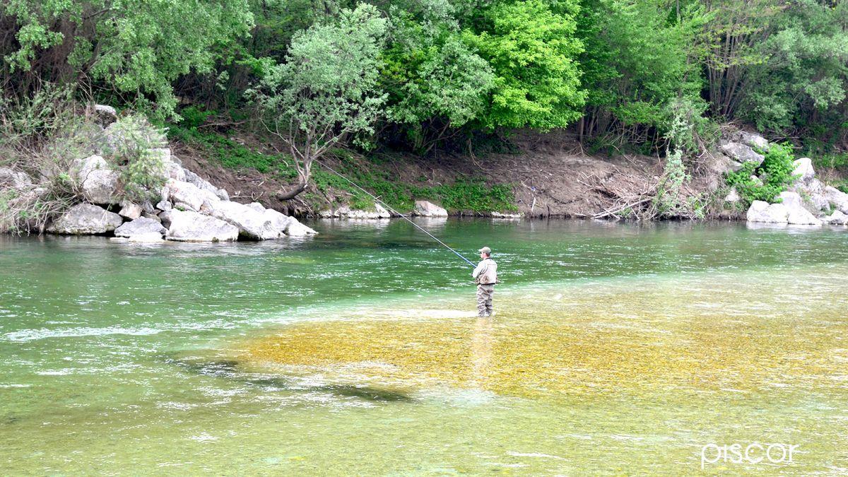Pesca alla Trota con Galleggiante 2