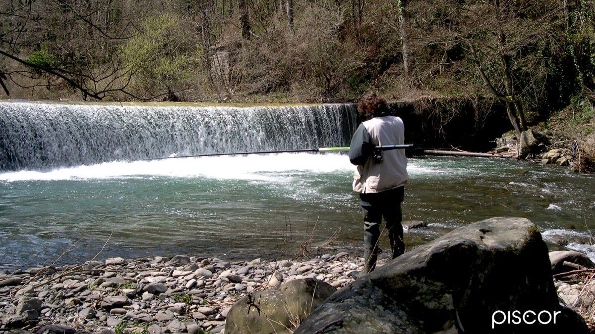 Pesca alla Trota in Torrente 1