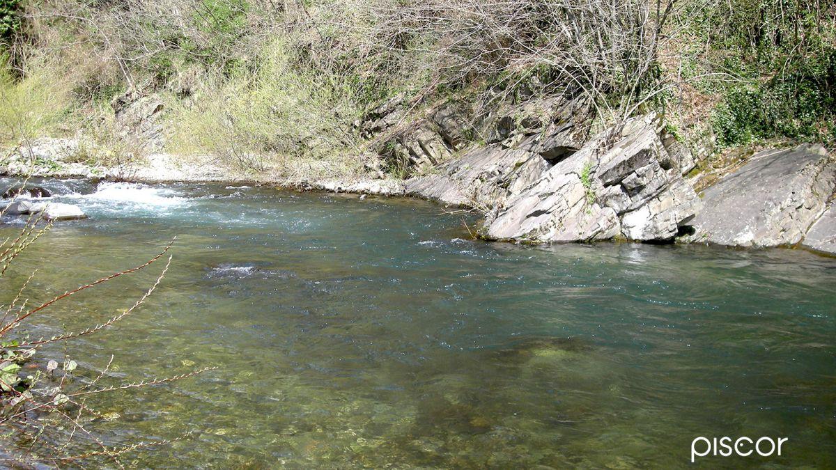 Pesca alla Trota in Torrente 8