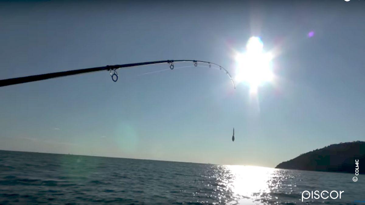 Pesca alle Seppie dalla Barca 8