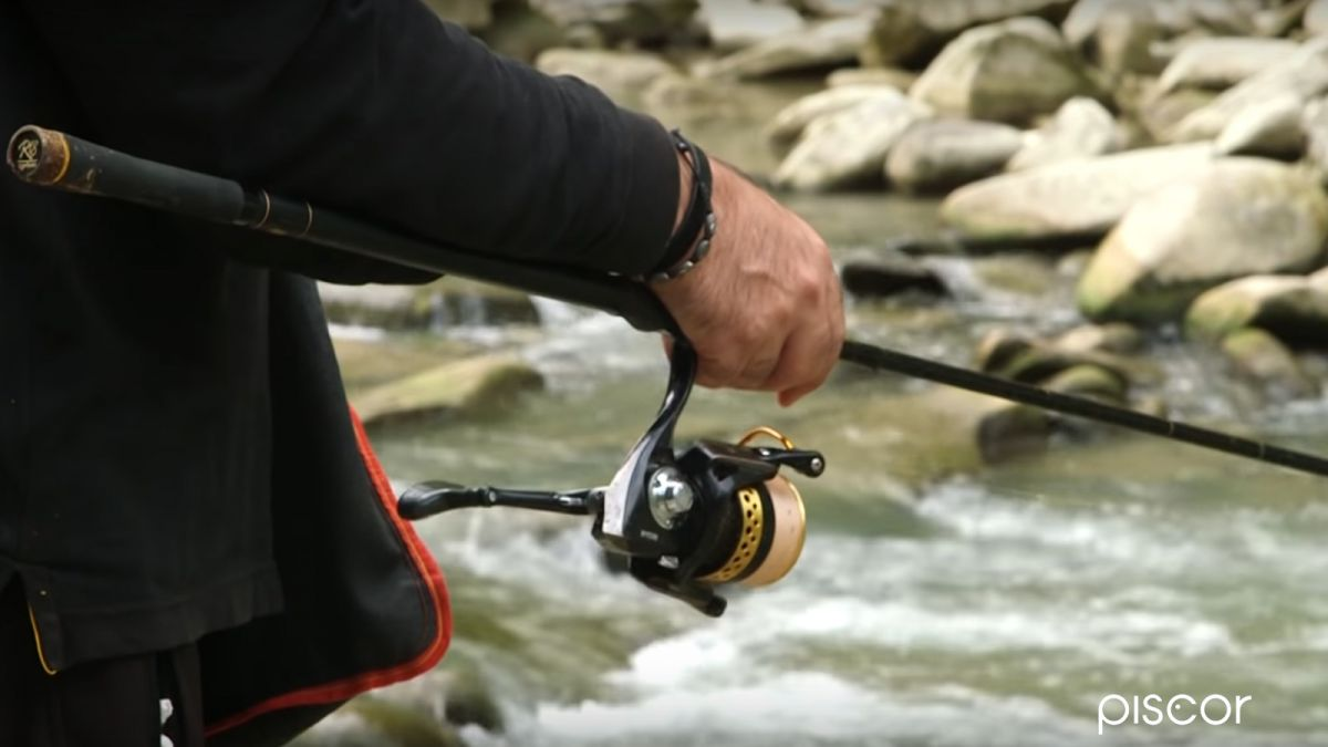 Pesca Cavedano 7