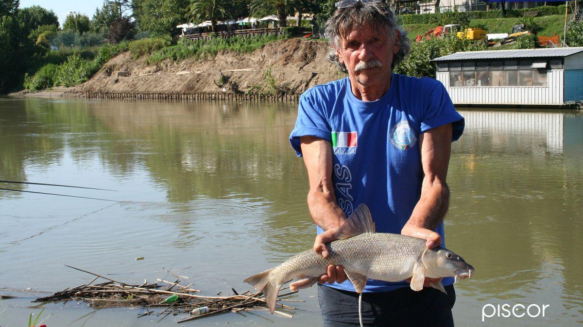 Pesca Colpo Galleggianti Vela 3
