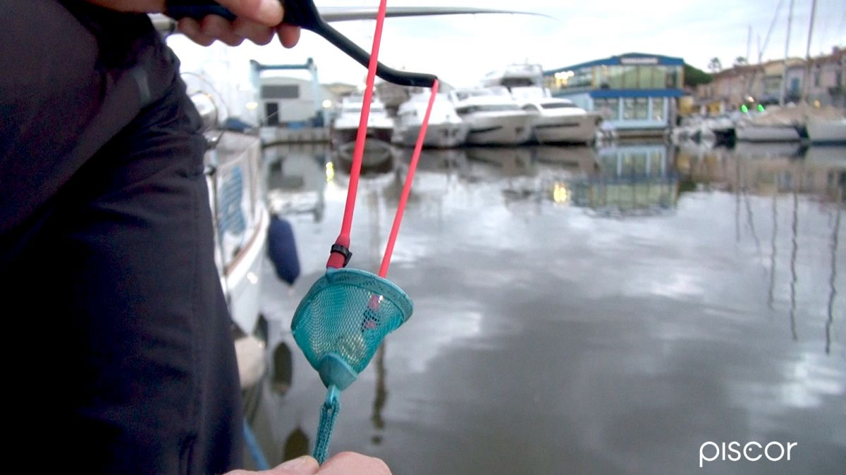 Pesca con la Bolognese 5
