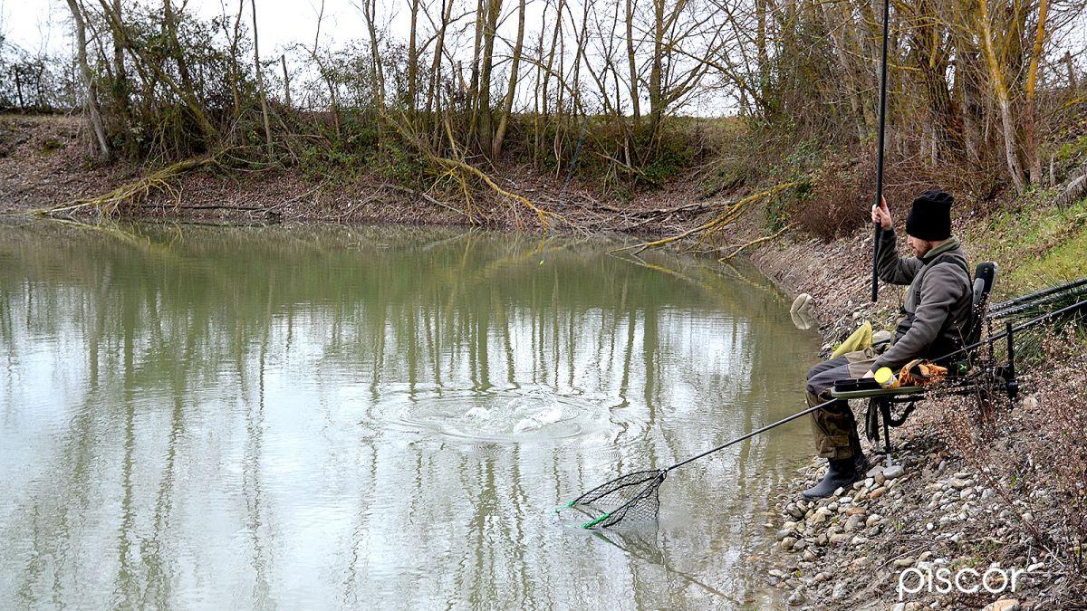 Pesca con Pellet 5