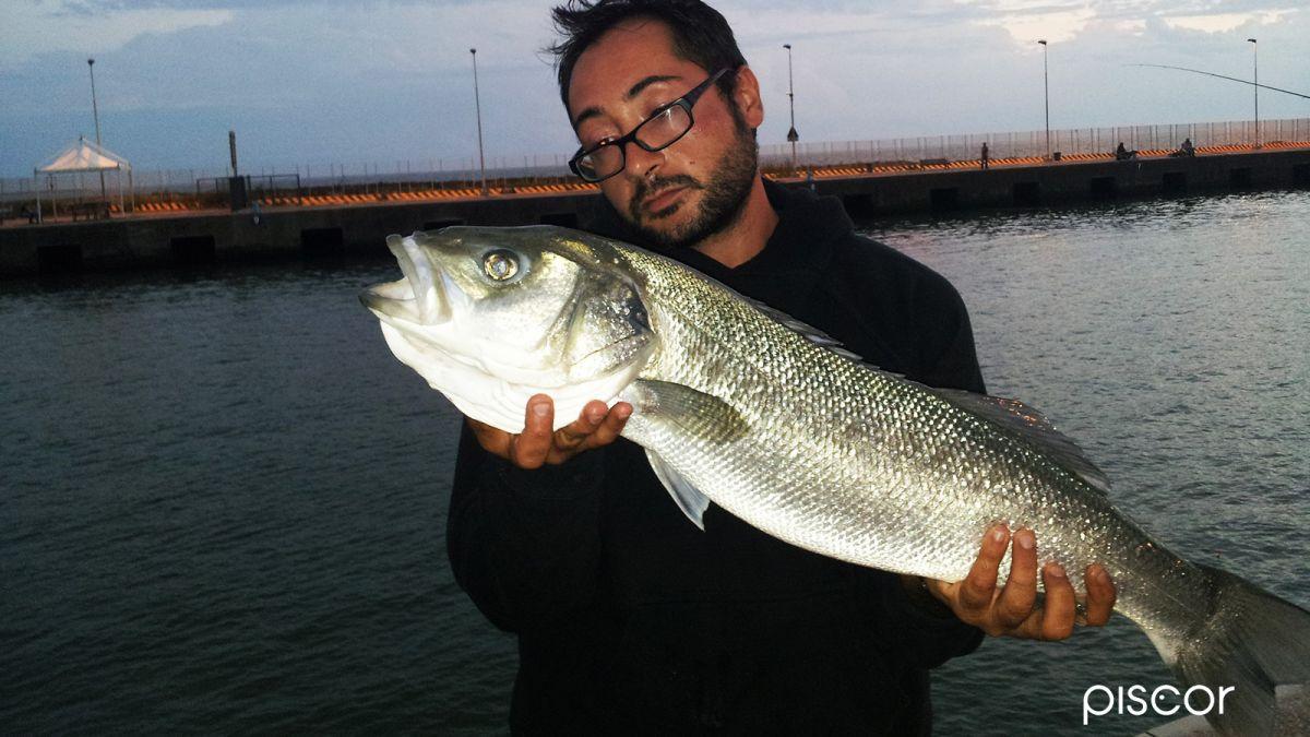 pesca da riva 5
