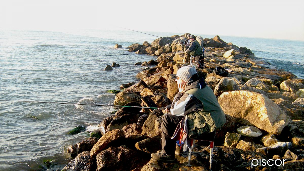 Pesca da Riva - Scogliera Artificiale 1