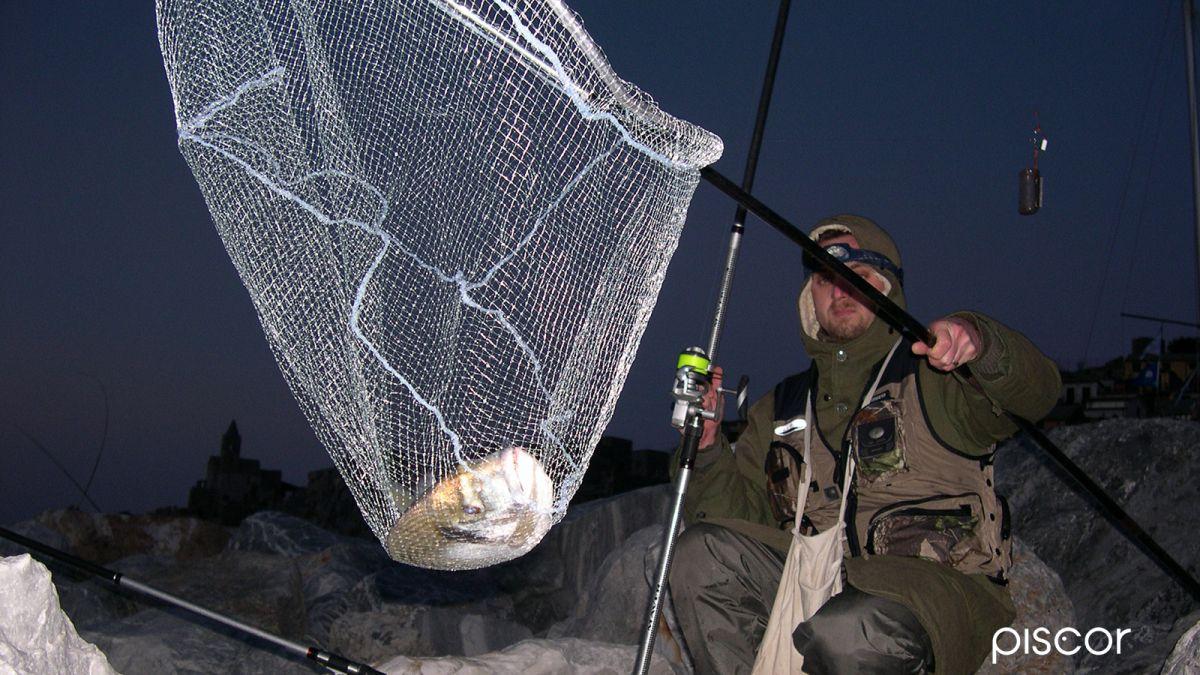 Pesca da Riva - Scogliera Artificiale 4