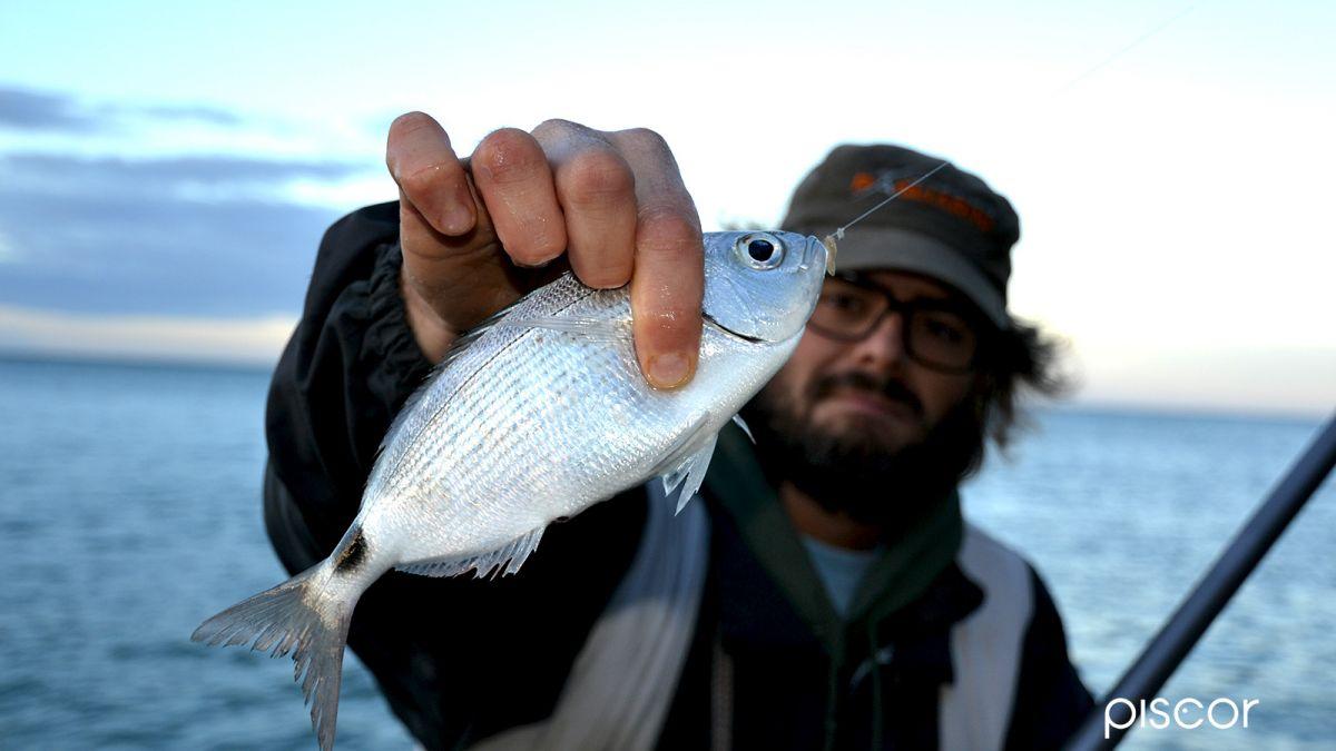 Pesca dalla Scogliera 3