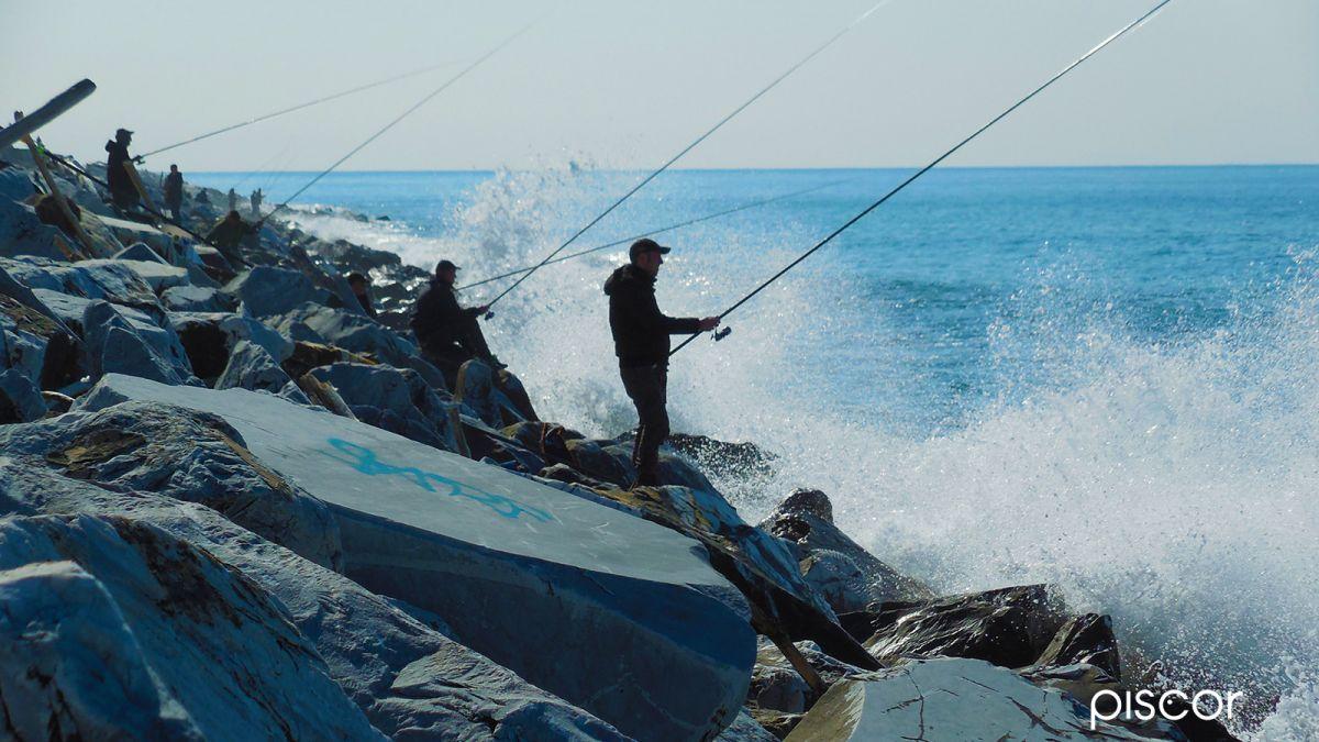 Pesca dalla Scogliera 4