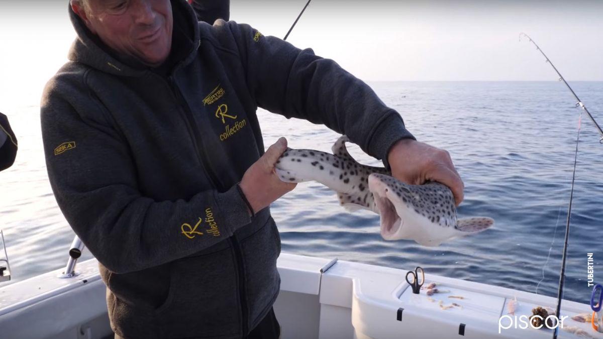 Pesca Dello Scorfano 4