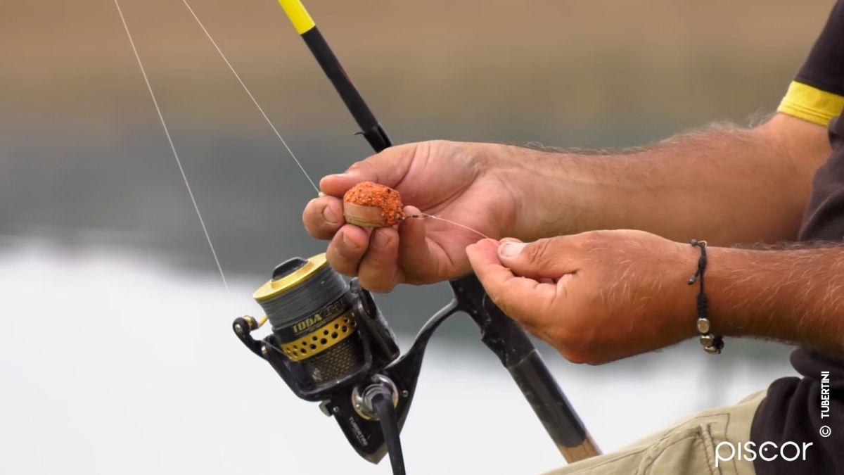 Pesca Feeder