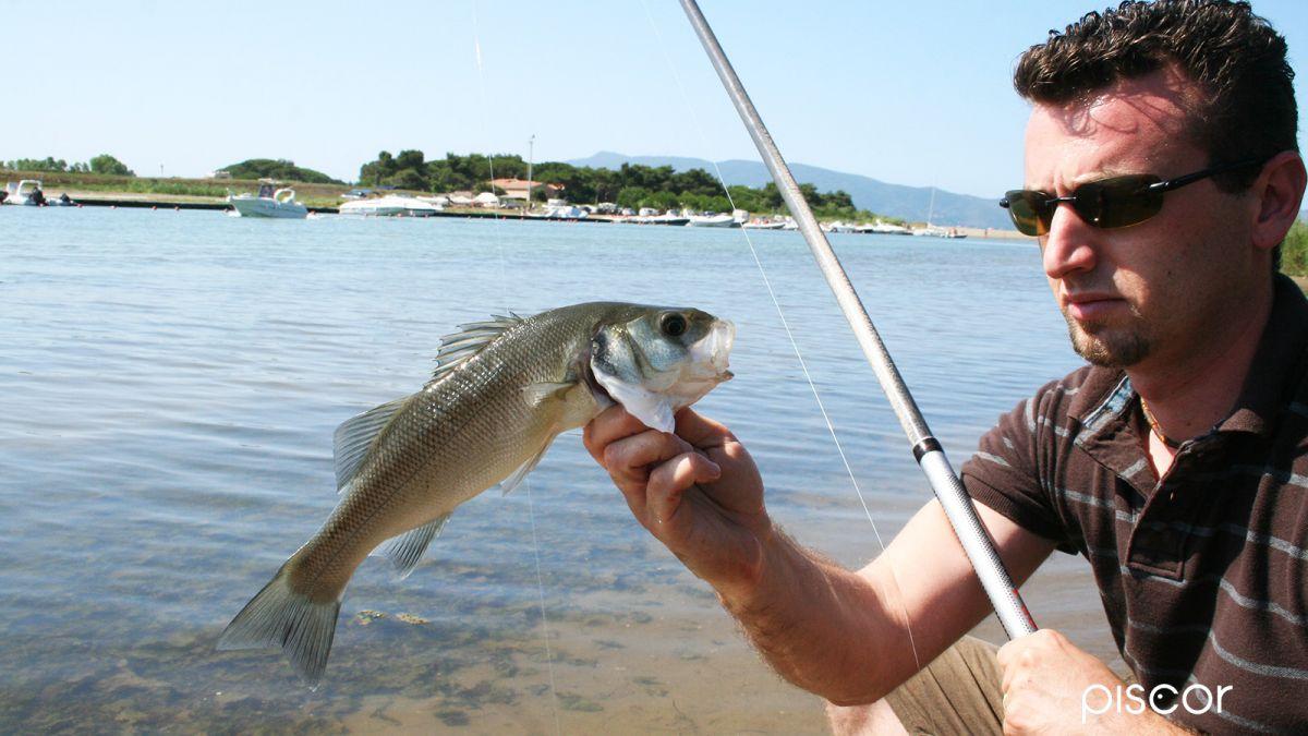 pesca in foce 7