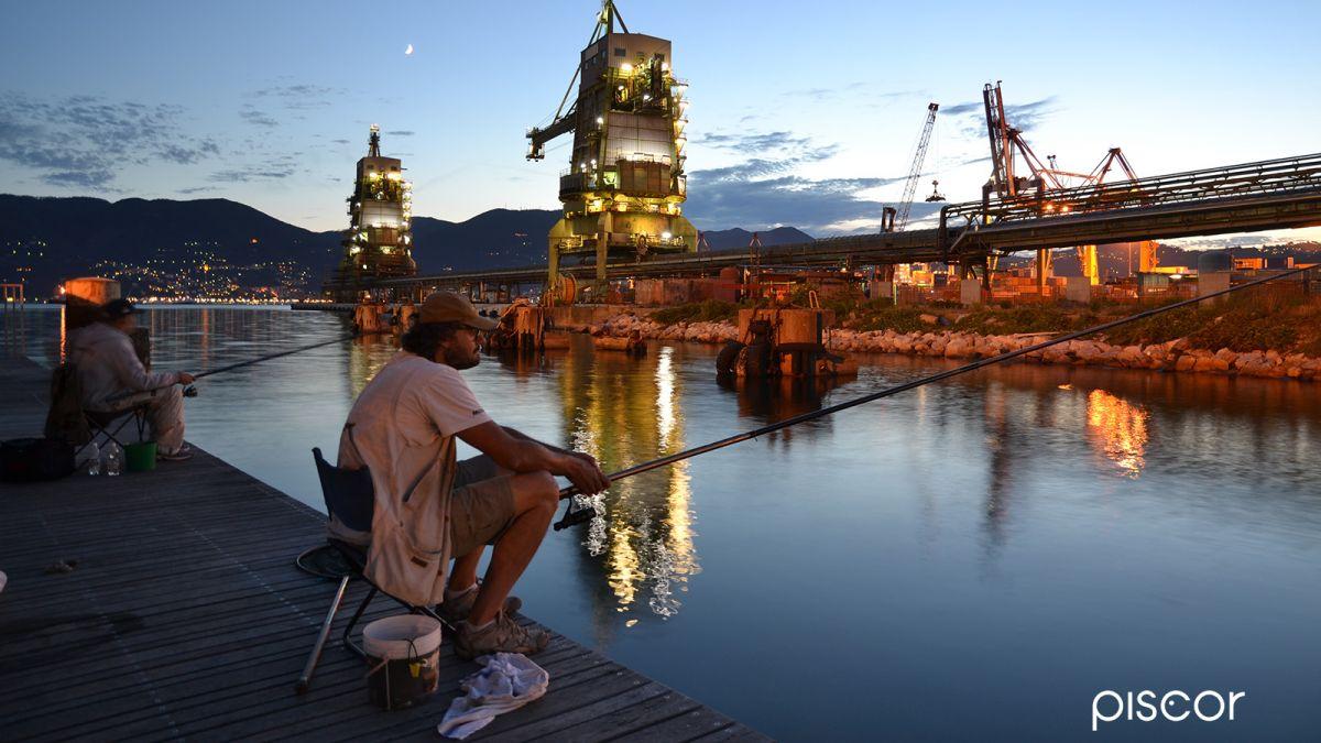 Pesca in Mare da Riva 2