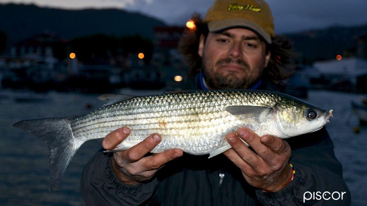 Pesca in Mare da Riva 5