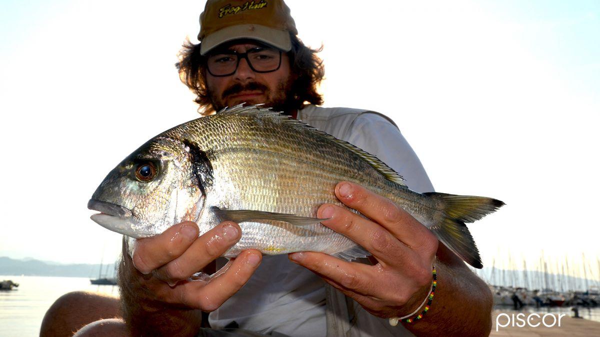 Pesca in Mare da Riva 7