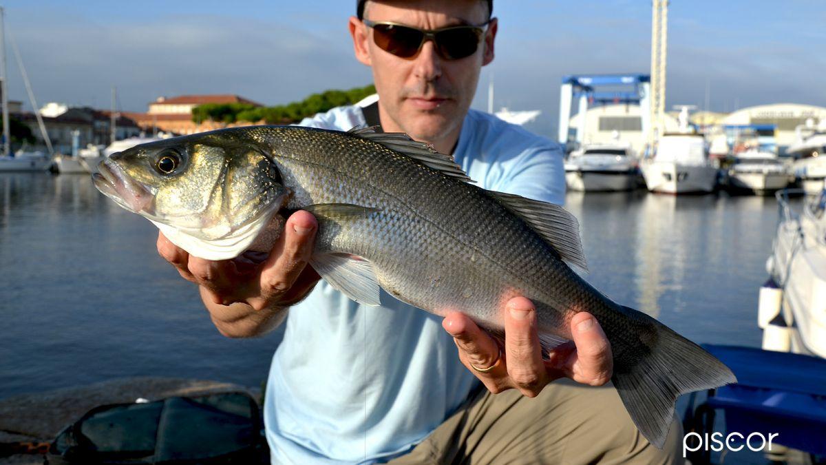 Pesca in Mare da Terra 1