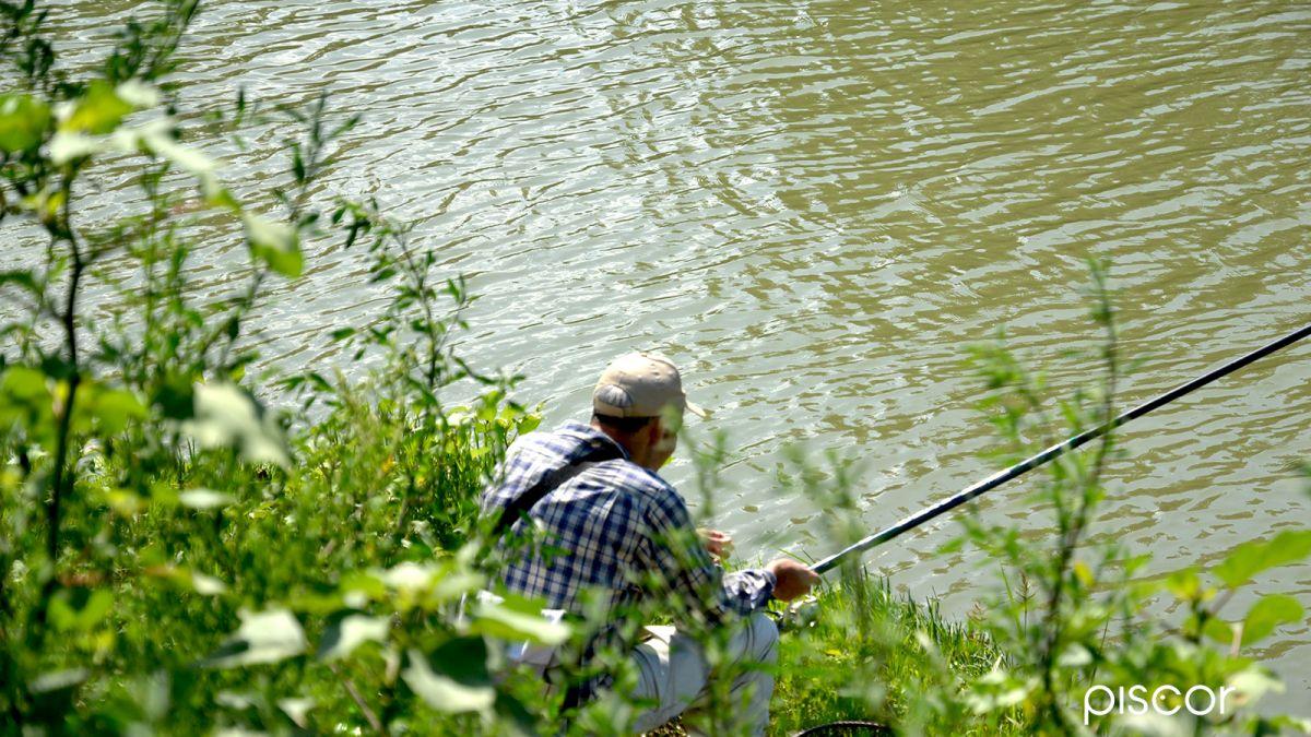 Pesca in Mare da Terra 2