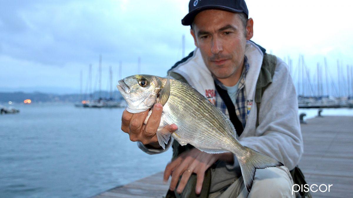 Pesca in Mare da Terra 7